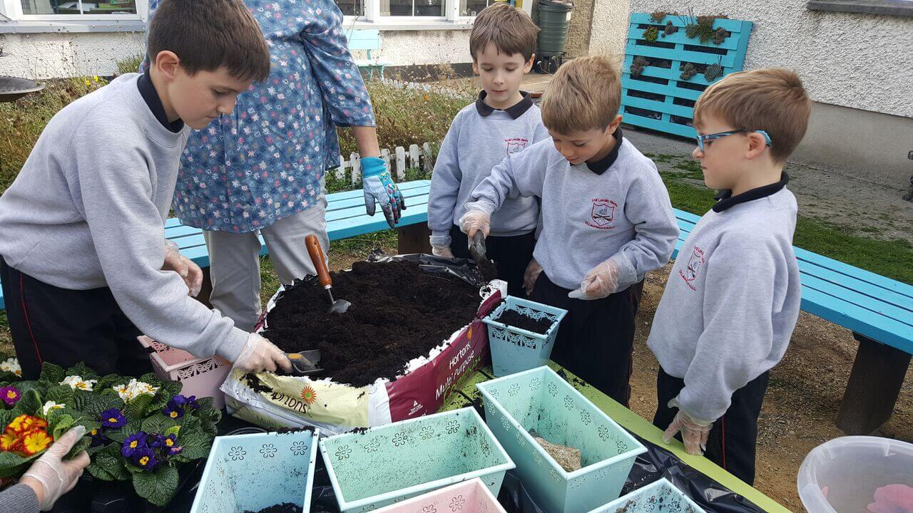 A photo of St Laurence BNS students in their school garden_2