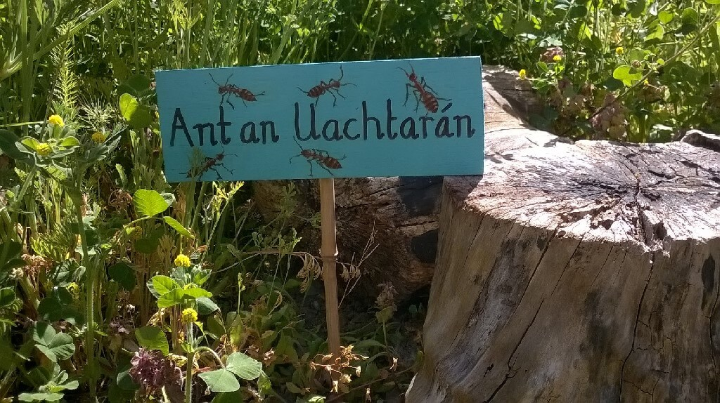 A photo of the St Laurence BNS Garden Insect Hotel_2